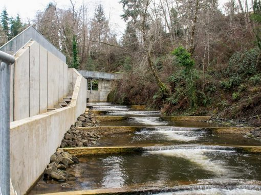 Mill Creek Dam